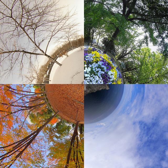 4 seasons in circle