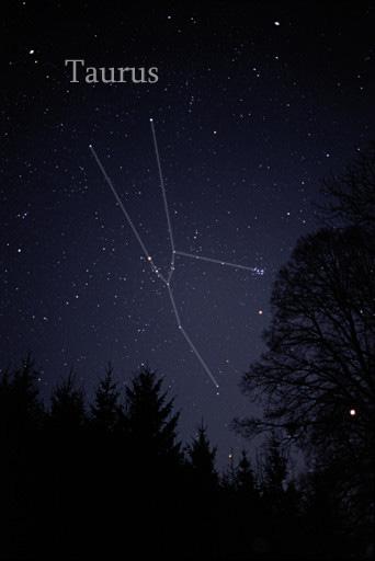 Taurus Constellation Star